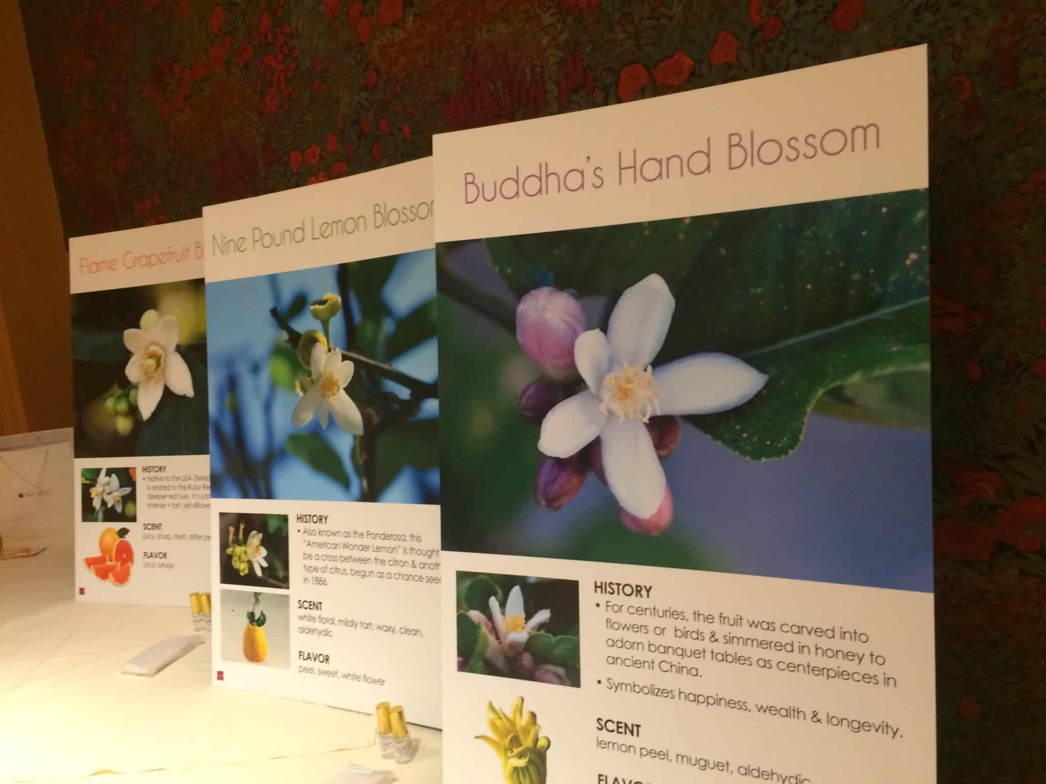 Takasago Orange Blossom presentation
